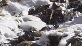 Arroyo entre la acumulación de hielo almacen de metraje de vídeo