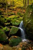 Arroyo hermoso en bosque coloreado otoño imagenes de archivo