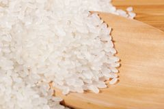 Arroz Fotos de Stock