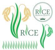 arroz ilustração do vetor