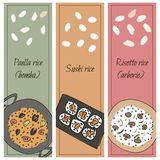 Arroz ajustado para pratos diferentes ilustração do vetor