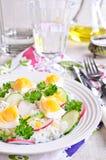 Arroz blanco con el rábano, el pepino y los huevos Fotos de archivo libres de regalías
