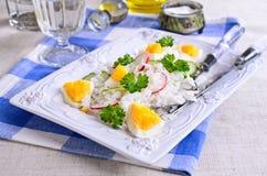 Arroz blanco con el rábano, el pepino y los huevos Fotografía de archivo libre de regalías