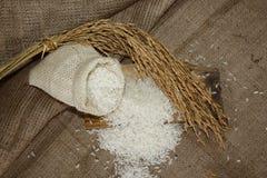 Arroz blanco, granos del arroz en la arpillera imagen de archivo