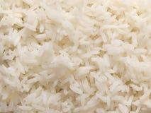 Arroz branco cozinhado imagens de stock