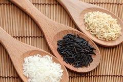 Arroz branco e arroz selvagem de arroz & integral no colheres de madeira Fotografia de Stock