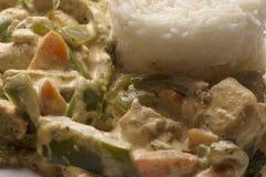 Arroz branco e galinha cozinhados imagem de stock royalty free