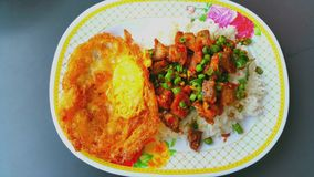 Arroz coberto com as folhas friáveis salteado da carne de porco e da manjericão, Tailândia Foto de Stock