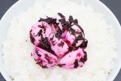Arroz cocinado japon?s con las salmueras del ajo fotografía de archivo libre de regalías