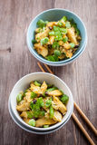 Arroz com carne e vegetal da galinha Imagem de Stock