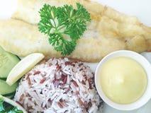 arroz com peixes fotos de stock royalty free
