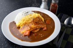 Arroz con curry de la tortilla Imagen de archivo
