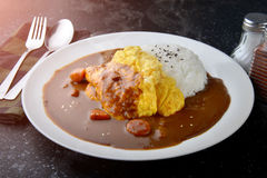 Arroz con curry de la tortilla Fotos de archivo libres de regalías