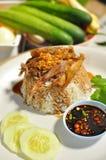 arroz con el pato de la salsa marrón Fotografía de archivo libre de regalías