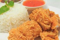 Arroz con el pollo frito y la salsa tailandesa del estilo y la salsa de chile Fotos de archivo libres de regalías