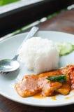 Arroz con goma frita del curry del cerdo Imagen de archivo libre de regalías