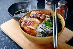 Arroz con la parrilla del pollo del teriyaki Fotografía de archivo libre de regalías