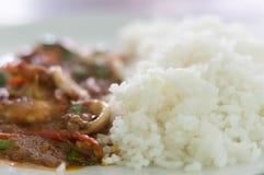 Arroz cozinhado com alimento de mar fritado picante Fotografia de Stock
