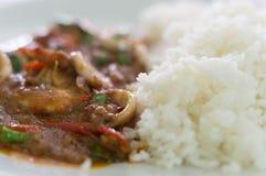 Arroz cozinhado com alimento de mar fritado picante Fotografia de Stock Royalty Free