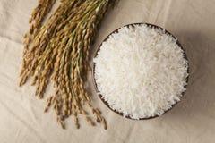 arroz crudo fotos de archivo libres de regalías