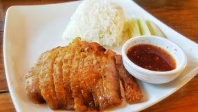 Arroz da carne de porco Imagem de Stock Royalty Free