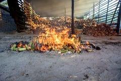 Arroz de bambu de Rosted no tempo de manhã fotos de stock royalty free