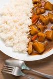 Arroz de caril japonês, caril da carne de porco, cozimento home Imagens de Stock
