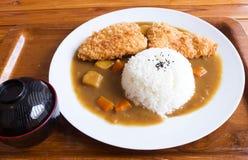 Arroz de curry japonés, curry frito de los pescados Imagen de archivo libre de regalías