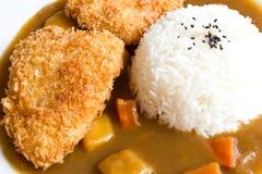 Arroz de curry japonés, curry frito de los pescados Fotos de archivo libres de regalías