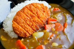 Arroz de curry de Tonkatsu del japonés o curry y arroz imágenes de archivo libres de regalías