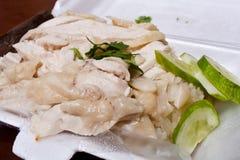 Arroz del pollo de Hainanese en caja de la espuma de poliestireno Imagenes de archivo