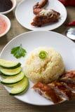Arroz del pollo. Primer asiático del arroz del pollo de Hainan del estilo Imágenes de archivo libres de regalías