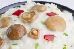 Arroz do cogumelo do tampão do leite do açafrão com molho de vinho branco Foto de Stock Royalty Free