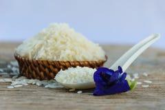 arroz do jasmim Imagens de Stock