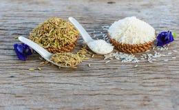arroz do jasmim Imagens de Stock Royalty Free