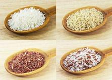 Arroz do jasmim e arroz integral na colher de madeira Imagens de Stock Royalty Free