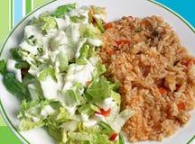 Arroz e salada Imagem de Stock Royalty Free