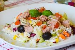Arroz e salada dos tunfish Foto de Stock