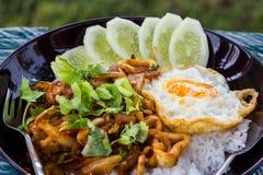 Arroz frito del curry de los mariscos Imagen de archivo libre de regalías