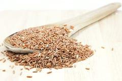 Arroz integral tailandês cru no alimento saudável do arroz da concha Fotografia de Stock