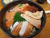 Arroz japonés famoso de la comida con las diapositivas crudas de los salmones y los huevos de color salmón Imagen de archivo