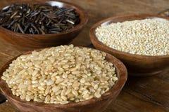 Arroz moreno, quinoa y arroz salvaje Fotos de archivo libres de regalías