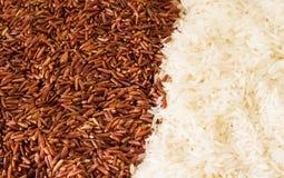 Arroz moreno y arroz blanco Foto de archivo libre de regalías