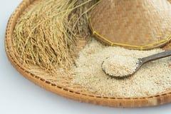 Arroz moreno y arroz de arroz en el fondo de bambú fotos de archivo