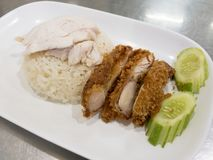 Arroz o Kao Mun Kai del pollo de Hainanese Pollo cocido al vapor gastrónomo tailandés con arroz Foto de archivo libre de regalías