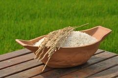 Arroz 'paddy' na tabela de madeira no fundo do campo do arroz fotos de stock