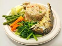 Arroz, pasta do pimentão, peixe frito Imagem de Stock