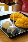Arroz pegajoso del mango y leche de coco Imágenes de archivo libres de regalías