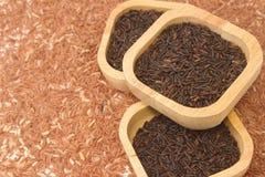 Arroz preto tailandês do jasmim (baga do arroz) na bacia de madeira Imagem de Stock