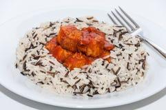 Arroz salvaje con la salsa del atún y de tomate Imágenes de archivo libres de regalías